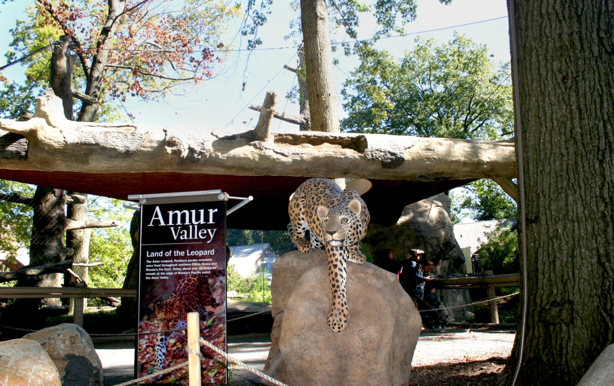 Amur Valley at the Staten Island Zoo. Photo courtesy of Staten Island Zoo.