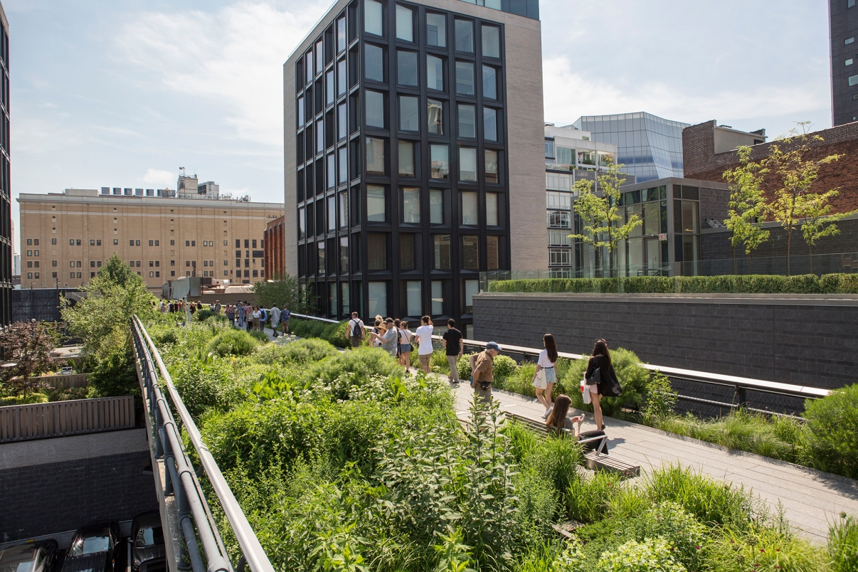 The High Line, Photo by Brittany Petronella